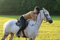 Верховая езда, прокат лошадей на базах отдыха Ленинградской области